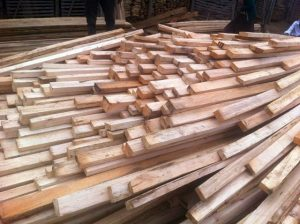 1000 Timbers Purchased!